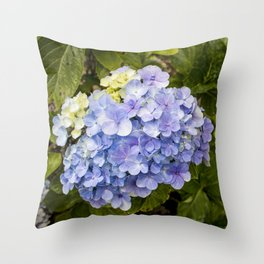 Lavender Hydrangeas in Nicaragua Throw Pillow