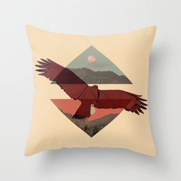 HAWKING Throw Pillow