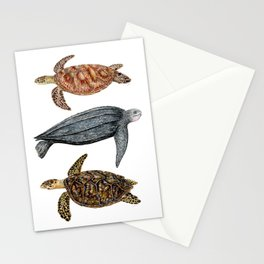 Green, leatherback and hawksbill sea turtles Stationery Cards