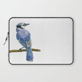 Blue jay watercolor Laptop Sleeve