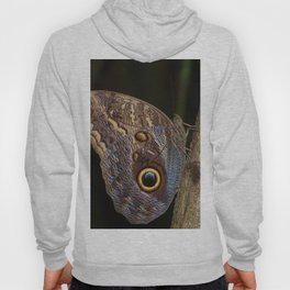 Owl butterfly in Costa Rica - Tropical moth Hoody