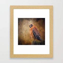 Pole Hunter Framed Art Print