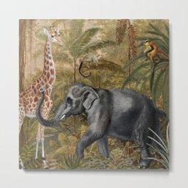 Vintage & Shabby Chic - Tropical Jungle Life Metal Print