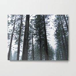 Tahoe 0341 Metal Print