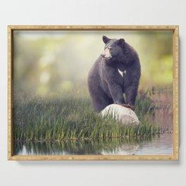 Black Bear on a rock near water Serving Tray