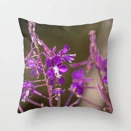Concept flora : Lythracaee Throw Pillow