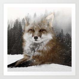 Fox Stare Art Print