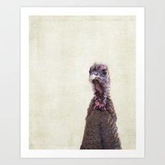 Turkey Portrait Art Print