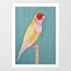 Canary of a Kind Art Print