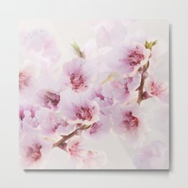 Blossoms greet spring Metal Print