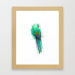 Ave 2 Framed Art Print