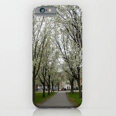 Boston Trees Slim Case iPhone 6s