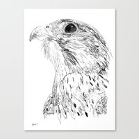 falcon Canvas Prints featuring Falcon by Tom Ralston