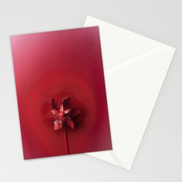 Red explosion Stationery Cards