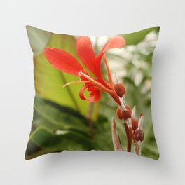 Red Flower photography Throw Pillow