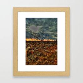 baby tree Framed Art Print