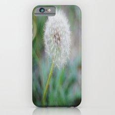 Lone Dandelion iPhone 6s Slim Case