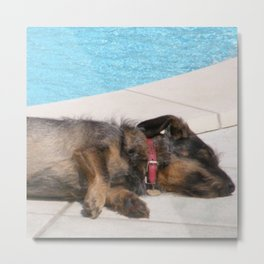 Lizzy, SOO tired Metal Print