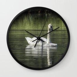 Swan with Cygnet Wall Clock
