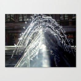 Belgian water shot Canvas Print