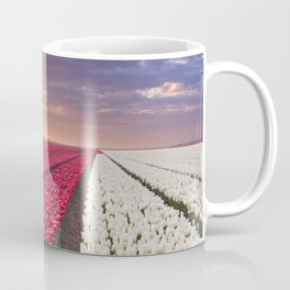I - Rows of colourful tulips at sunrise in The Netherlands Coffee Mug