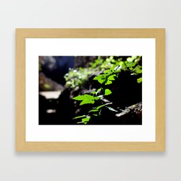 And all the magic that surrounds us Framed Art Print