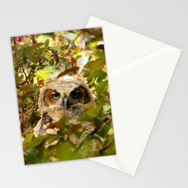 Baby owl in spring blossoms Stationery Cards