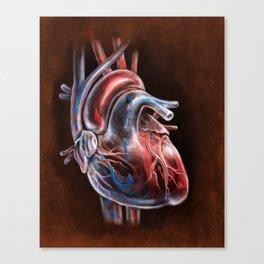 Blood Flow in Human Heart, by Chok Bun Lam Canvas Print