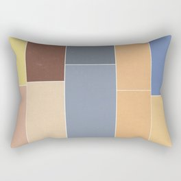 The Decay of Color Rectangular Pillow