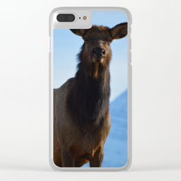 Elk in the Canadian Rocky Mountains Clear iPhone Case
