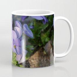 Purple viola in sunlight Coffee Mug