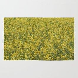 Rapeseed field Rug