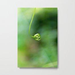 Green Tendril Metal Print