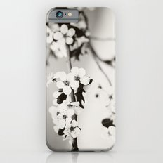 Cherry Blossoms (Black and White) iPhone 6 Slim Case