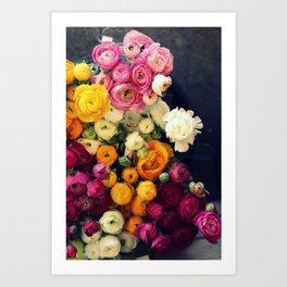 Loads of Ranunculus Art Print