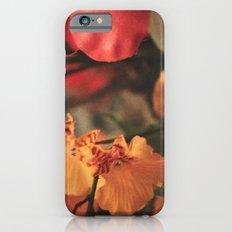 Vintage Love 2 Slim Case iPhone 6s