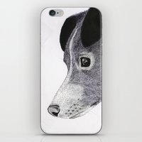 sia iPhone & iPod Skins featuring My Love Nihal by Puddingshades