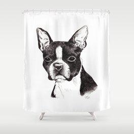 Boston Terrier Portrait Shower Curtain