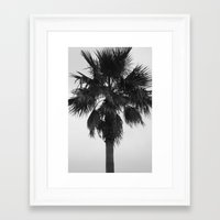 palm Framed Art Prints featuring Palm by Alwayzgreener