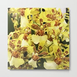 Flurry of Vibrant Yellow Orchids Floral Bouquet Metal Print