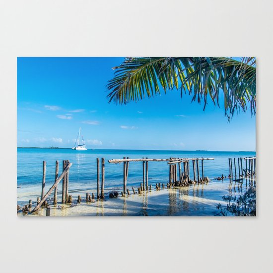 From Under the Palms Canvas Print