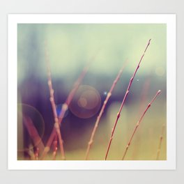 abstract nature°2 - fantasy Art Print