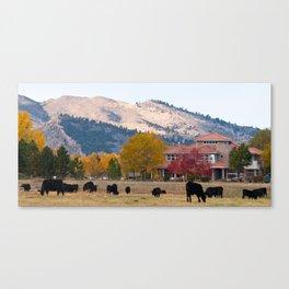 Rocky Mountain Autumn Ranch Canvas Print