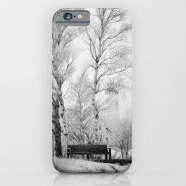 Pt. Iroquois Winter iPhone Case