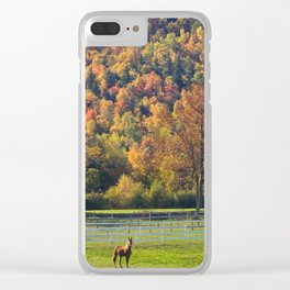 Spectacular fall color Clear iPhone Case