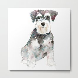 Miniature Schnauzer dog watercolors illustration Metal Print