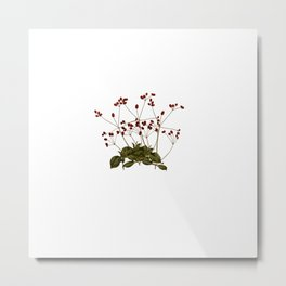 Magical flora #5 Metal Print