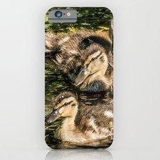 Ducklings iPhone 6s Slim Case