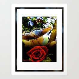 The Butterfly And The Rose Framed Art Print