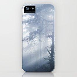 Sun rays shinning through foggy forest iPhone Case